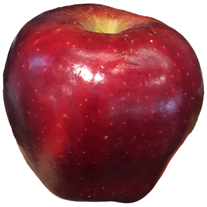 APPLE (Red Delicious) 1LB