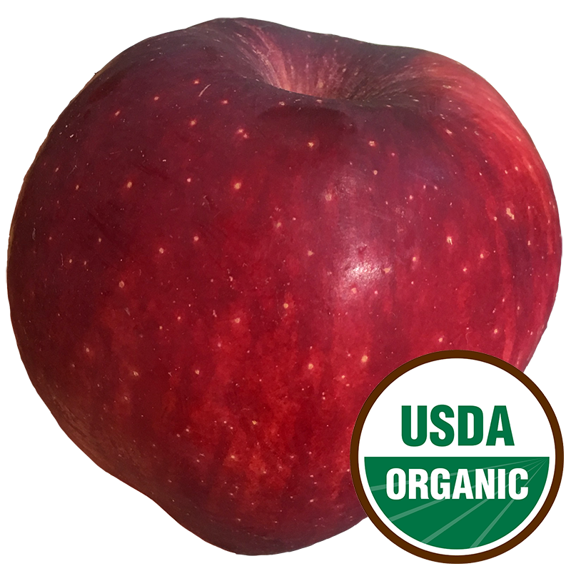 [ORGANIC] APPLE (Red Delicious) - 1LB