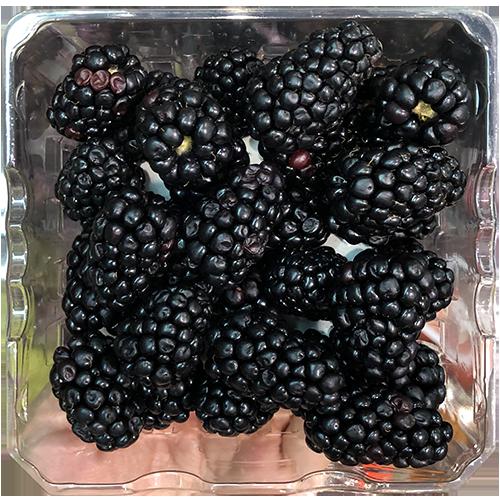 Blackberry (Package)