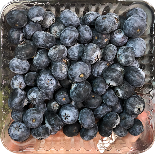 Blueberry (Package)