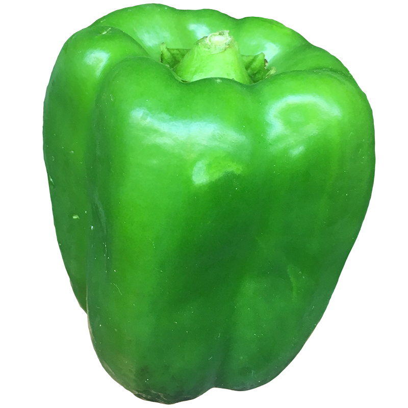 GREEN PEPPER - 1LB