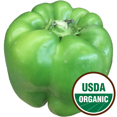 [ORGANIC] GREEN PEPPER 1LB