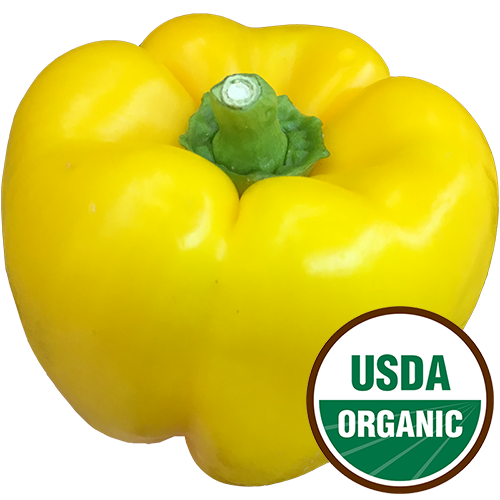 [ORGANIC] YELLOWPEPPER 1LB