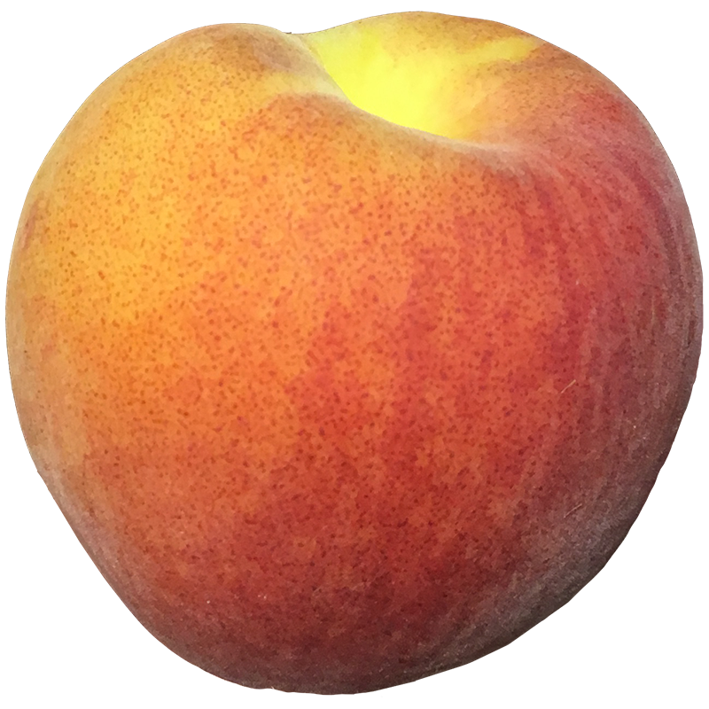 PEACH (Yellow) 1LB