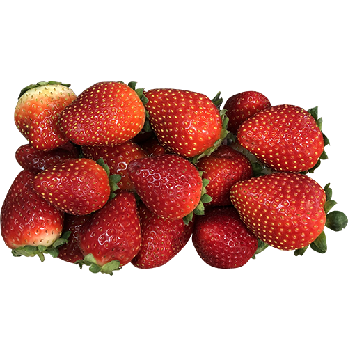 Strawberry (Package)