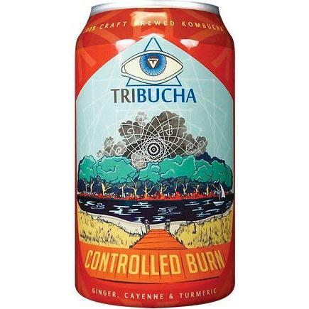 TRIBUCHA - KOMBUCHA - CONTROLLED BURN - 12oz