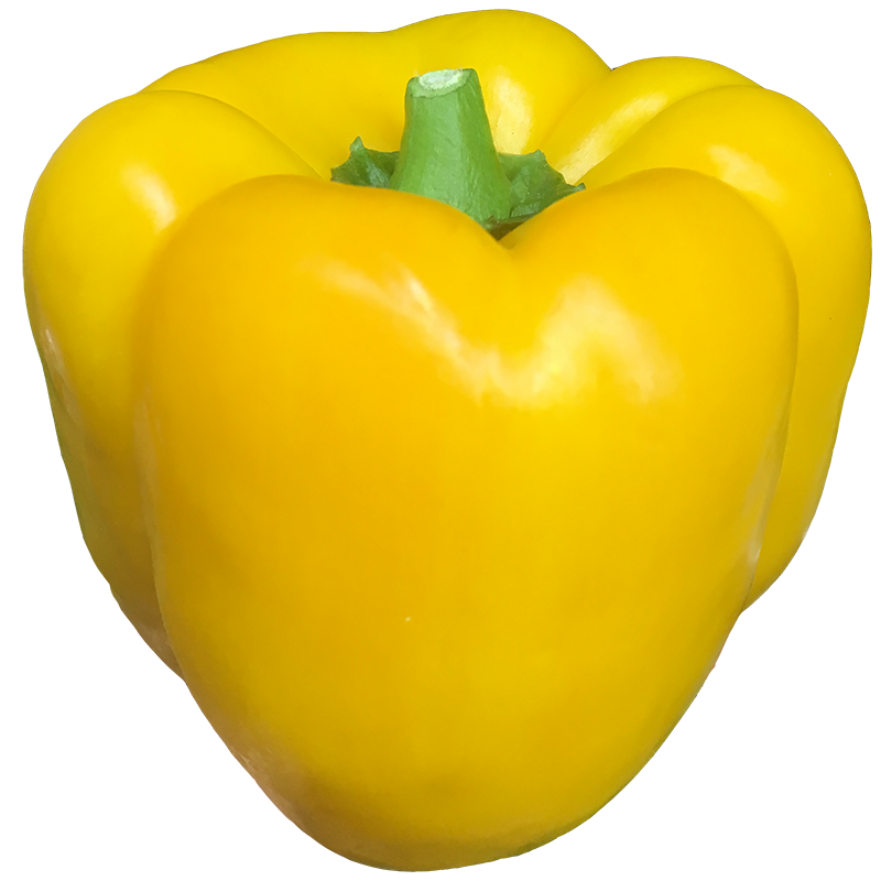 YELLOW PEPPER - 1LB